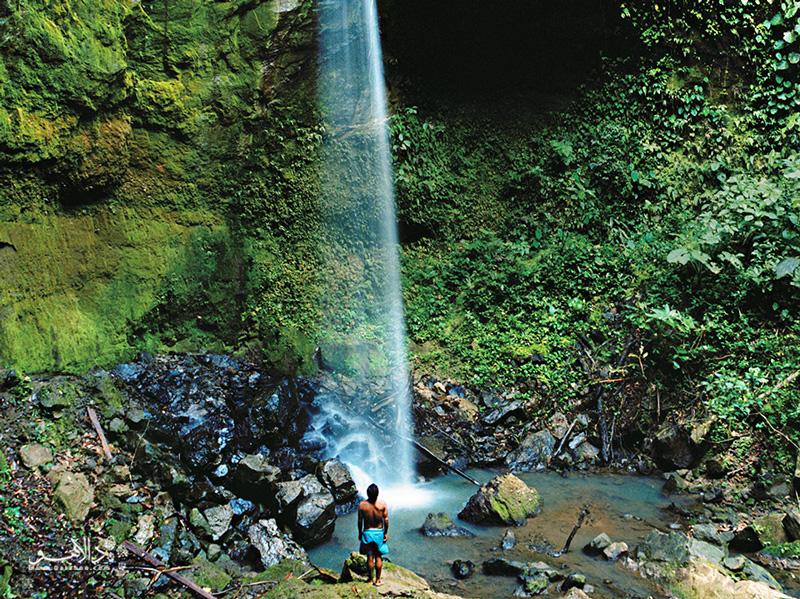 هر سلیقه یا هر بودجهای داشته باشید سفر به جنگلهای آمازون شما را حیرتزده خواهد کرد.