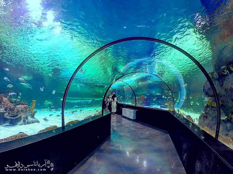 اولین تونل آکواریوم ایران در اصفهان است.