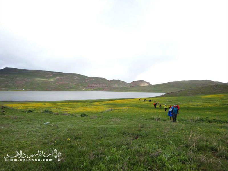 دریاچه نئور به خصوص در فصل بهار و اواسط خرداد ماه با رویش گل های فراموشم نکن، زیبایی خود را عرضه میکند.