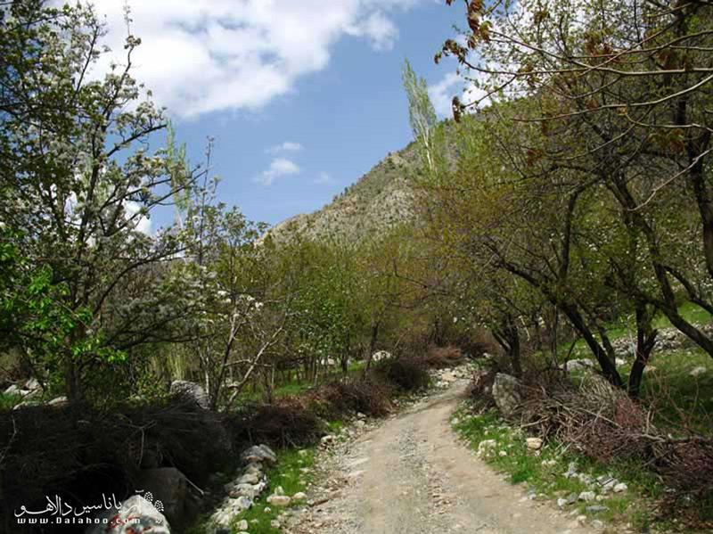 یکی از دیدنهای زیبای طبیعت جیرفت، دره دلفارد است.