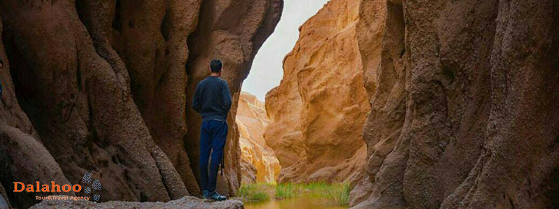 Once considered as the gateway of Khorasan, Tabas has a lot of tales to tell