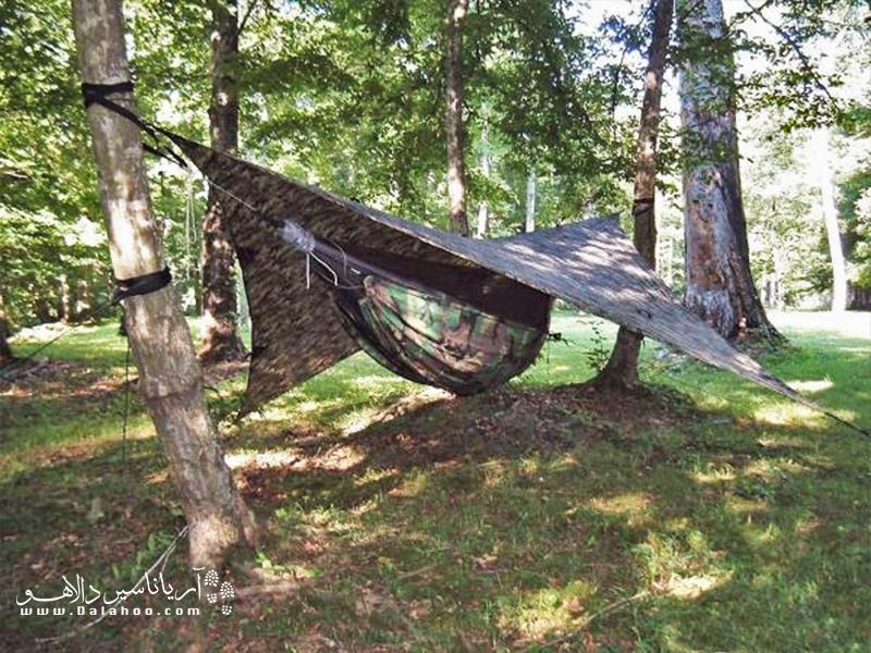 برای درست کردن این سرپناه کافی است که فقط دو درخت پیدا کنید.