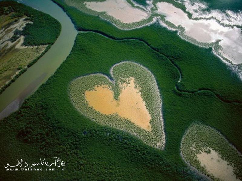 مراقب قلب تپنده محیط زیست باشیم.