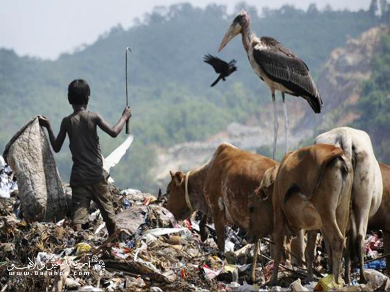 زبالههای ما قرار نیست به سیاره دیگری منتقل شوند.