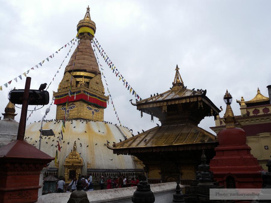 معبد میمونها