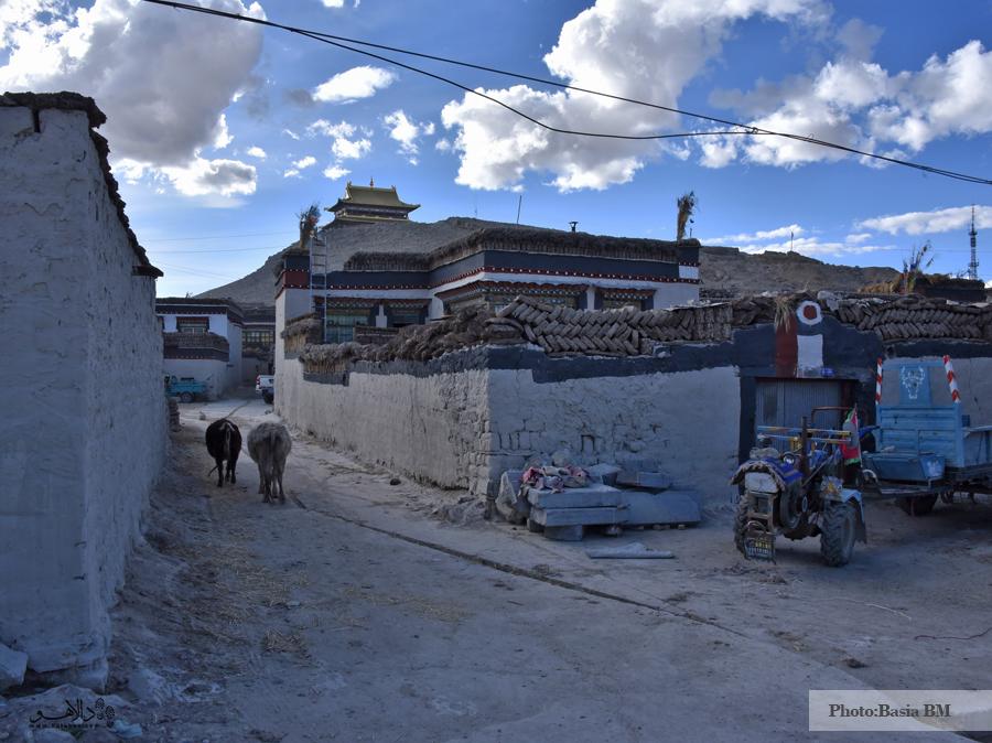 نمایی از شهر تینگری