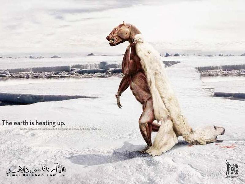 زمین در حال گرم شدن است.