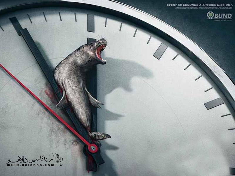 در هر یک ثانیه یک حیوان با بیتوجی آدمها میمیرد!