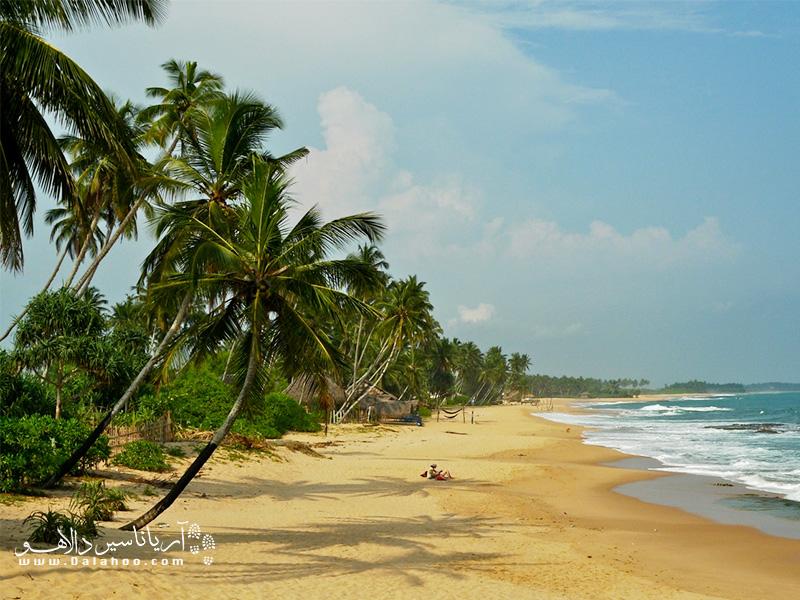 مطمئن باشید بعد از برگشتن از سفر هر بار که در صبح سرد و بارانی شنبهها در ترافیک شلوغ بمانید یادآوری خاطره درختان نخل و آبهای نیلگون سریلانکا آرامتان میکند.