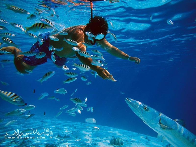 نواحی فوقالعادهای برای غواصی در آبهای کم عمق و عمیق در اطراف خط ساحلی سریلانکا وجود دارد.