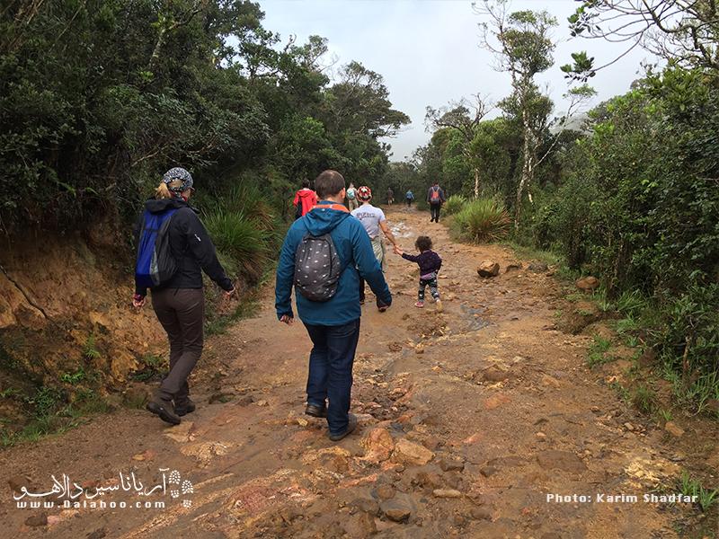 پیادهروی در دل طبیعت سریلانکا، اینجا دشت هورتُن است.