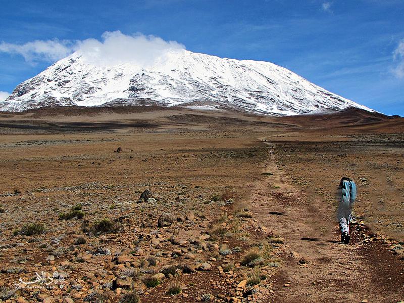 به سختی بتوان در مقابل صعود به بلندترین کوه آفریقا مقاومت کرد