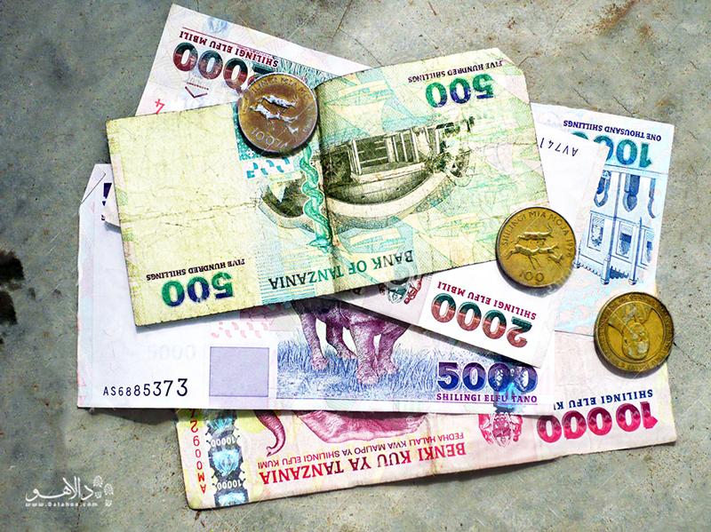 واحد پول تانزانیا شیلینگ تانزانیا (Tsh) است.