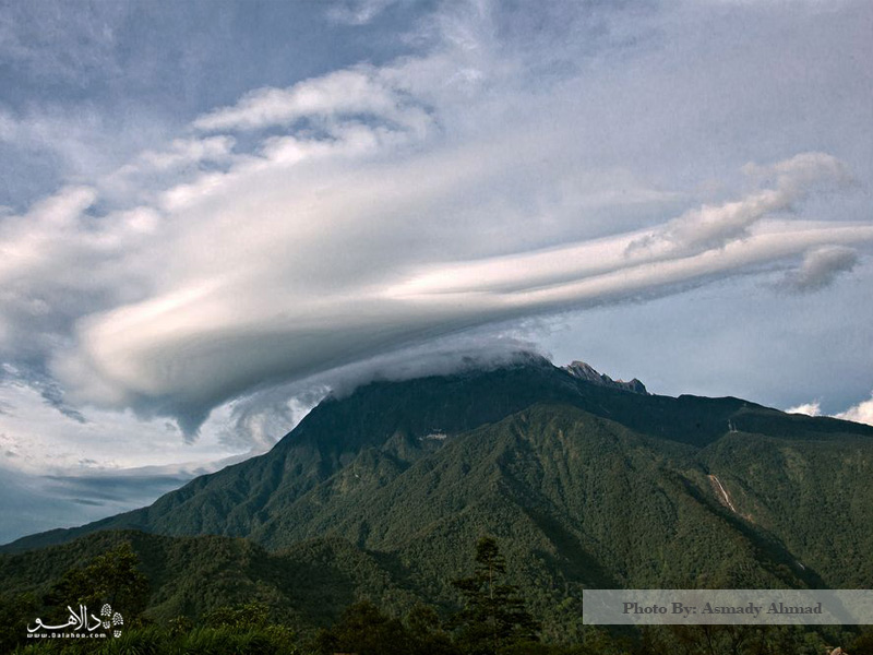 چشماندازی از کوه کینابالو در جنگل بورنئو