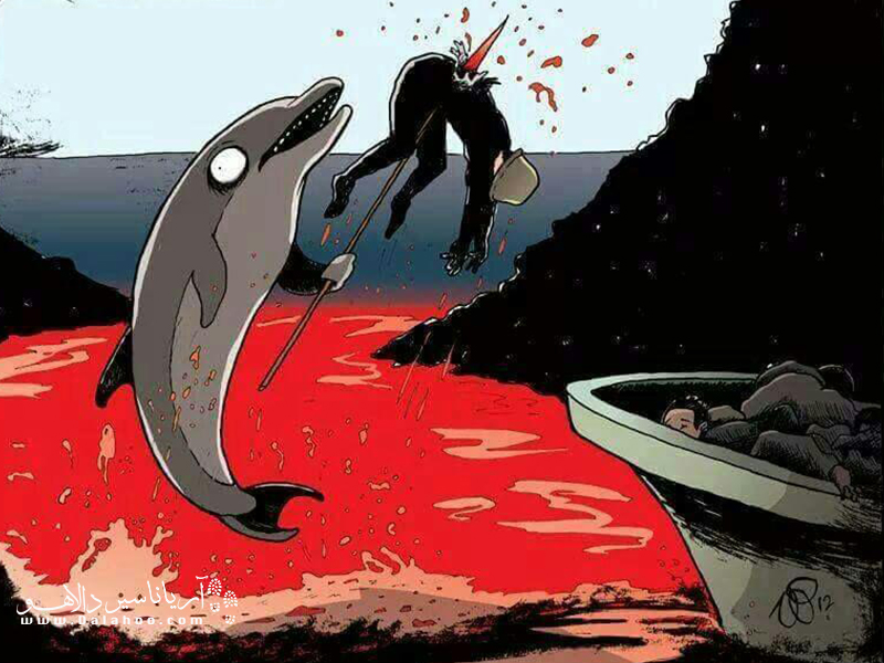 اگر انسانها شکار دلفینها میشدند.