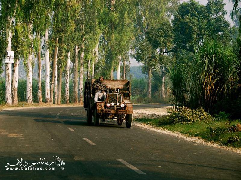 از ارزانترین وسایل نقلیه که در شمال هند رایج است میتوان به «جوکاد» اشاره کرد.