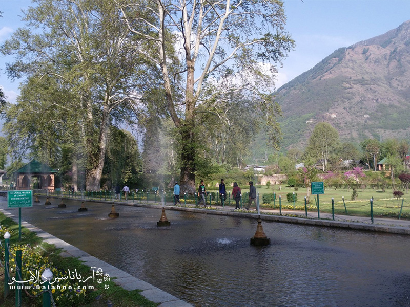 هر دو باغ براساس طرح چهار باغ ایرانی طراحی و اجرا شدهاند.