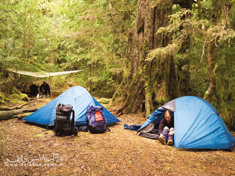 مکانی مناسب برای زدن چادر انتخاب کنید.
