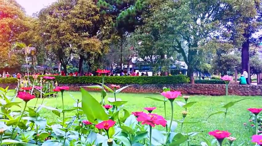 پارک Burnham