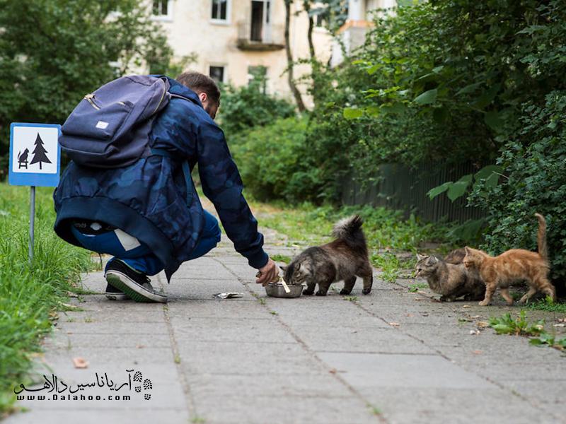 مهربانی با حیوانات قلب بزرگی میخواهد.