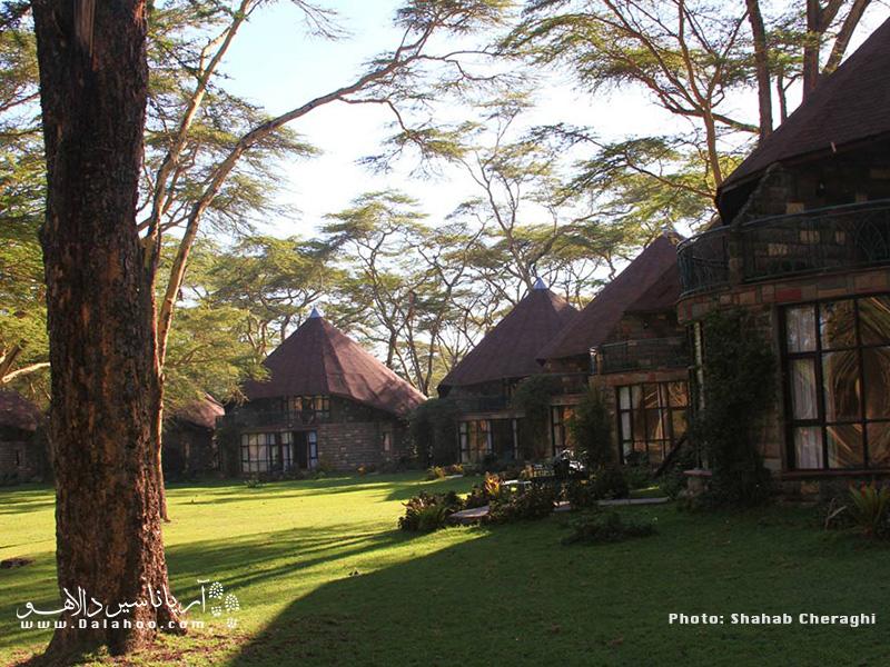 لوژها همان اقامتگاههایی هستند که در طبیعت، جنگلها و پارکهای ملی ساخته میشوند.
