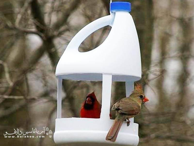 ظرف خالی مواد شوینده ما میتواند به خانهای برای پرندهها بدل شود.