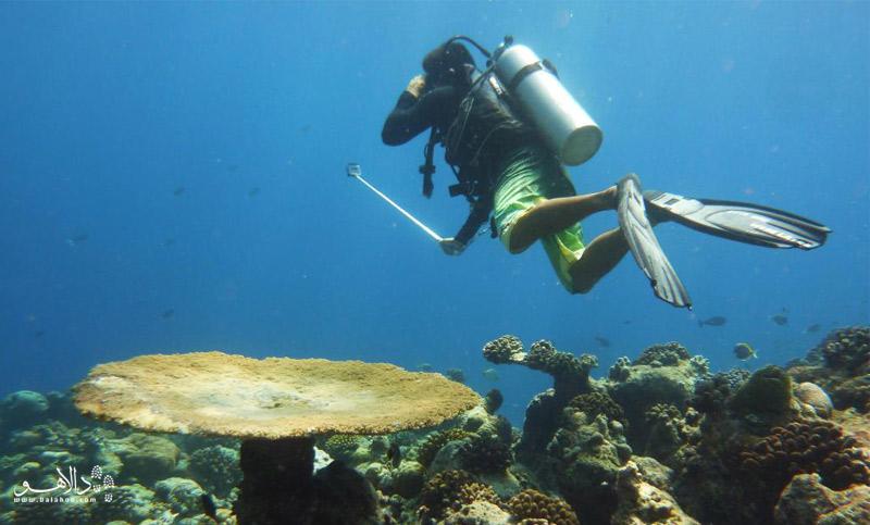 عکس سلفی در زیر آب