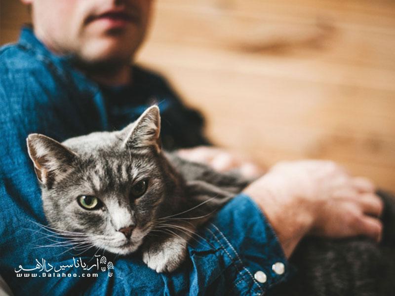 در آغوش گرفتن حیوانات حس فوقالعادهای دارد. چطور میتوان عاشقشان نشد؟