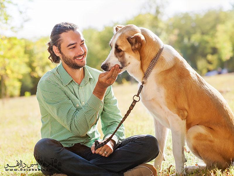 حیوانات میتوانند بهترین دوستان ما باشند. وظیفه همه ماست تا بکوشیم جهان را به جای بهتری برای زندگی آنها تبدیل کنیم.