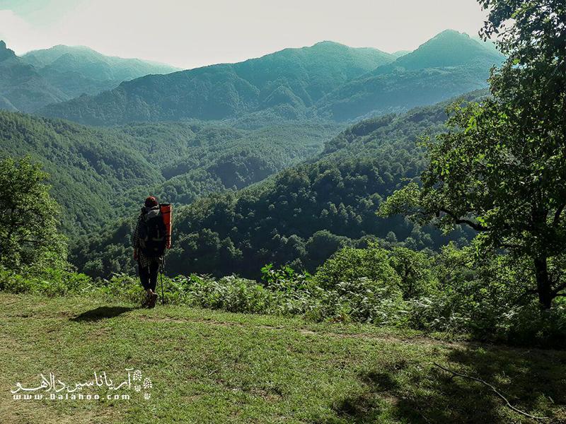 ایران پر از مناطق کوهستانی دلرباست.  با کمی فاصله گرفتن از خانه میتوانید در کوههای پوشیده از درخت جنگلپیمایی کنید