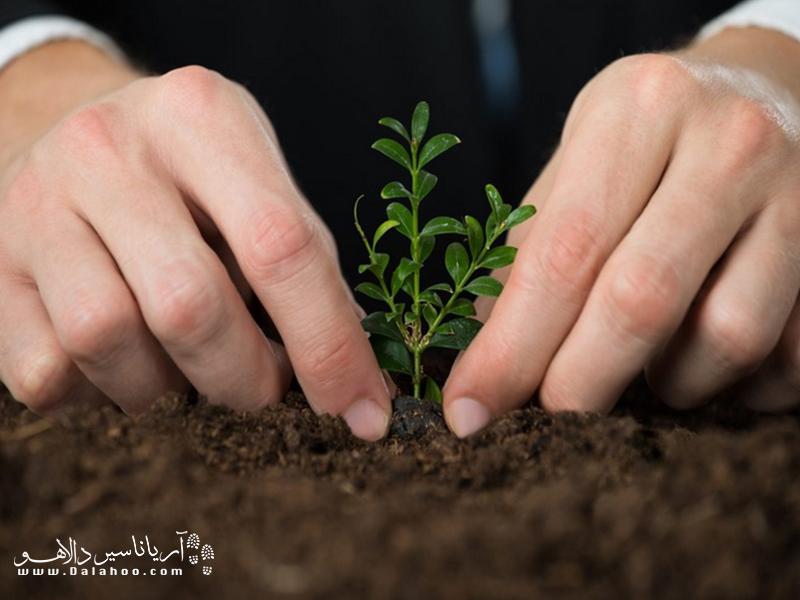روز 5 ژوئن (15 خرداد) روز جهانی محیط زیست است.