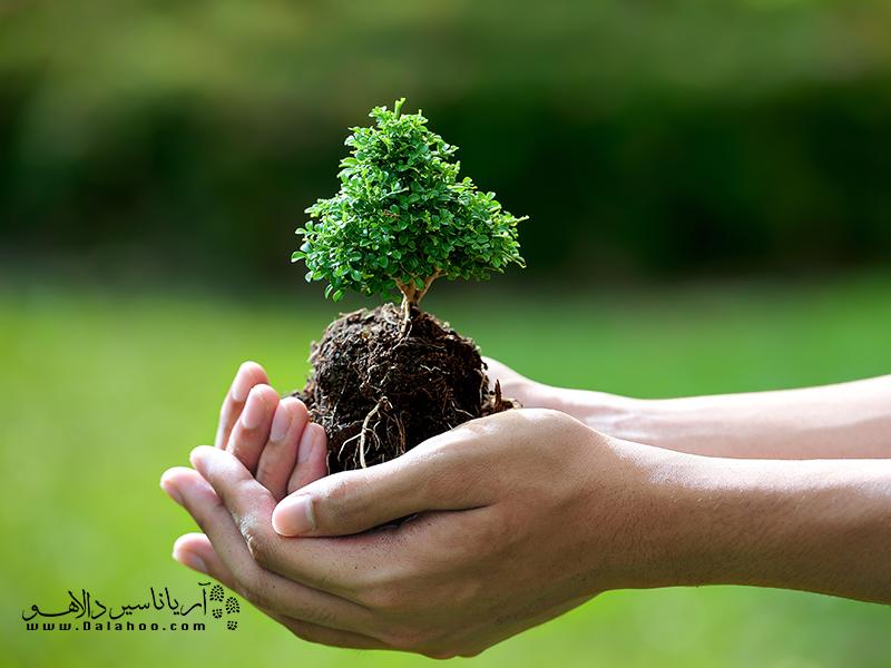 به دلیل شرایط اقلیمی ایران، درختکاری در ایران دارای ریشه در علایق ملی و سنتهای تاریخی دارد.