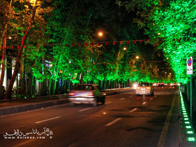 درختانی که با نورپردازیهای شبانه از استرحت محرومند.