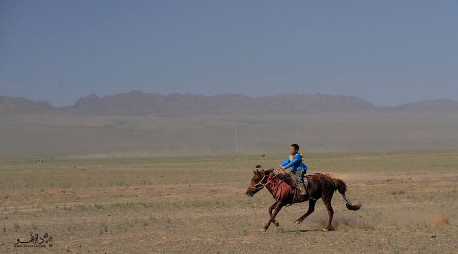 اسب سواری در دشت اردنزو