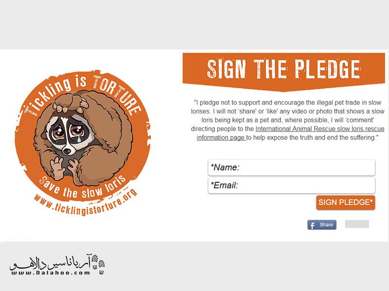 کمپین حمایت از اسلولوریسها.