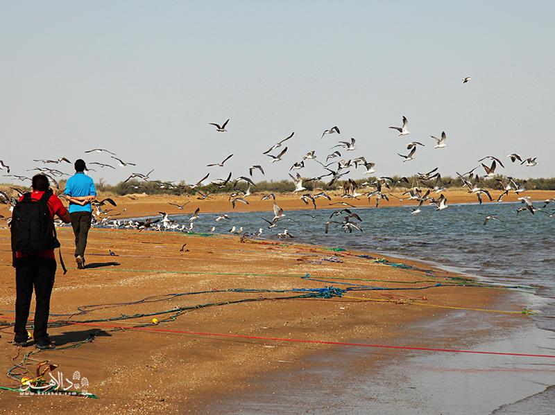اینجا بندر گواتر است: دروازه کوچکی از ایران به آبهای اقیانوس هند.