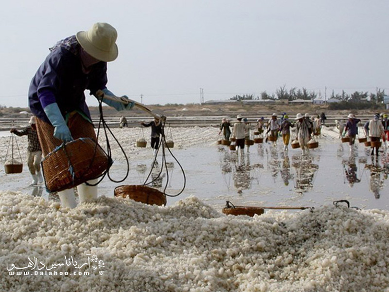 در برنامه امروزتان میتوانید به سراغ مزارع نمک هم بروید.