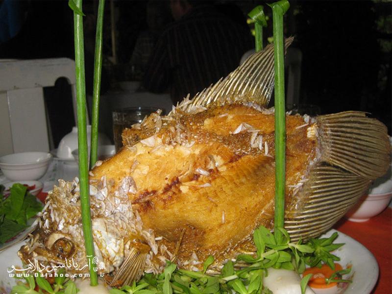 ماهی گوش فیلی گرانترین ماهی شهر هوشی مین است که در اینجا میتوانید امتحانش کنید.