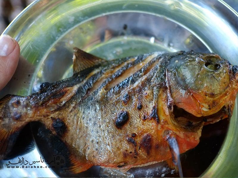 یکی از غذاهای جالب آمازون ماهی پیرانای کبابی است که با لیمو ترش سرو میشود.