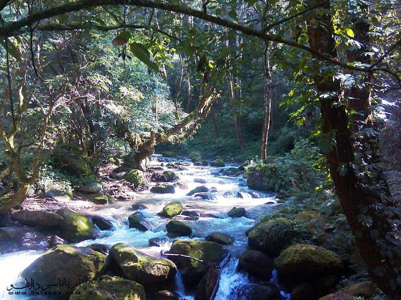 پارک ملی شیواپوری نزدیکترین پارک ملی به کاتماندو است.