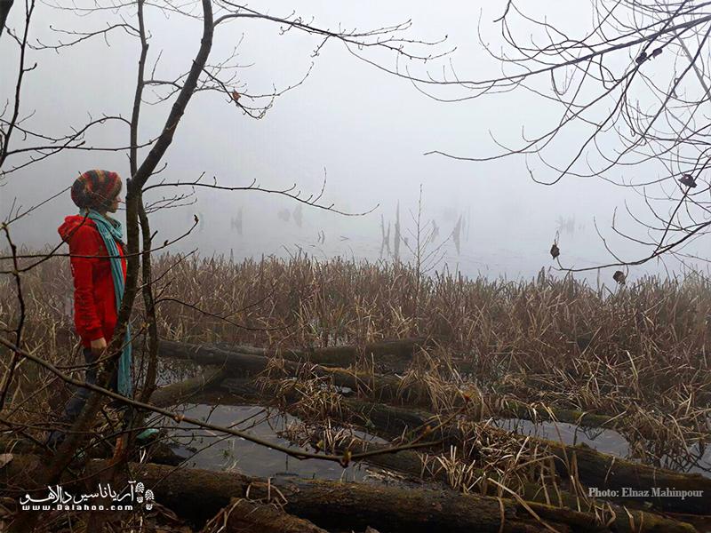 مناظر فوقالعاده دریاچه ارواح در کنار نمنم باران و صدای دلانگیز پرندگان آرامشی وصف نشدنی را ایجاد میکرد.