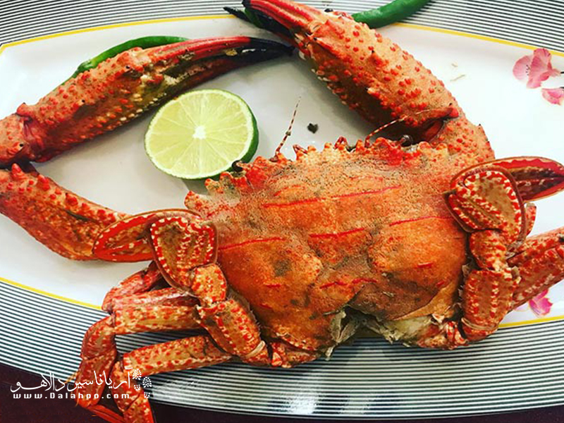 اگر غذاهای دریایی دوست دارید، حتما سینگو را هم میپسندید.