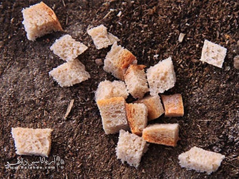 قبل افتادن نان روی زمین آن را ببوسید.