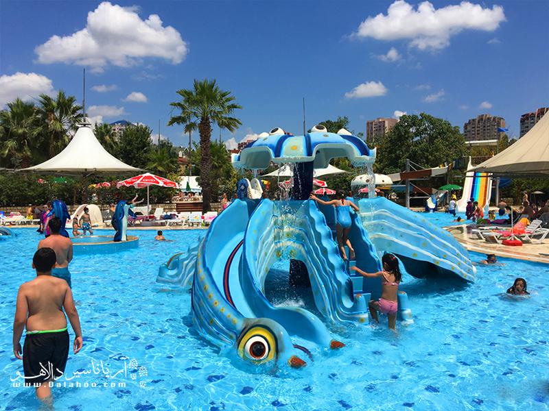 پارک آبی دلفین همه اعضای خانواده را سرگرم خواهد کرد.