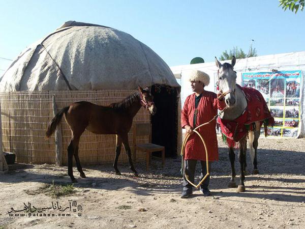 اقامتگاهمجید در استان گلستان، روستایچای قوشان کوچک قرار دارد.