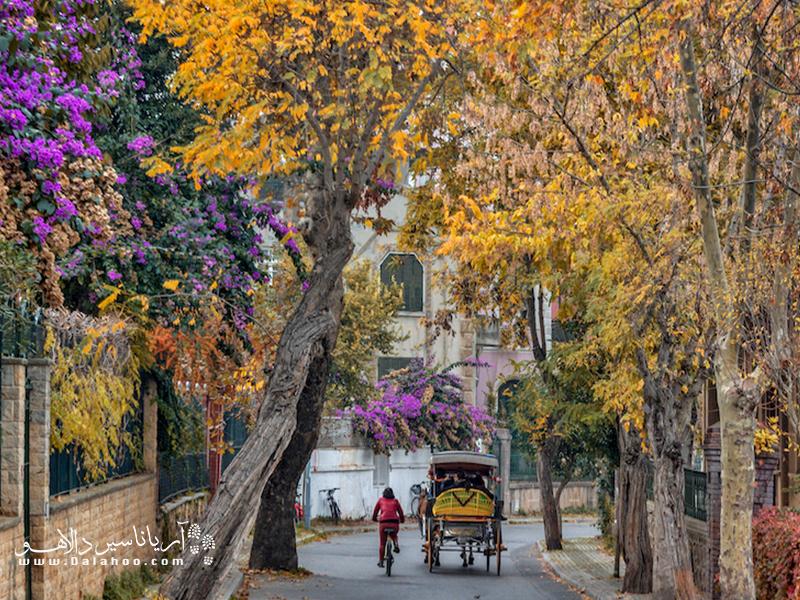 دوچرخه سواری در کوچههای دلربای بیوک آدا.