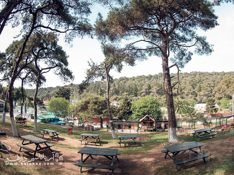 پارک طبیعت دیلبورنو در فصل تابستان هوای مطبوعی دارد.