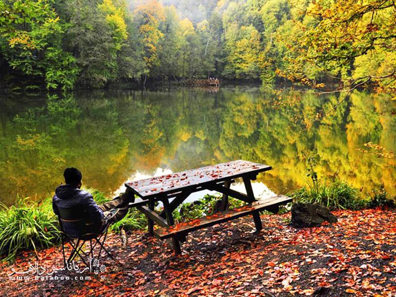 پاییز رنگارنگ در پارک ملی هفت چشمه.