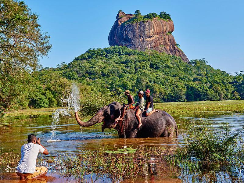 صخره سیگیریا در سریلانکا بسیار مشهور است.
