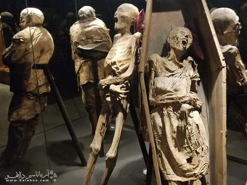 یکی از ترسناکترین موزههای جهان موزه مومیایی مکزیک است.